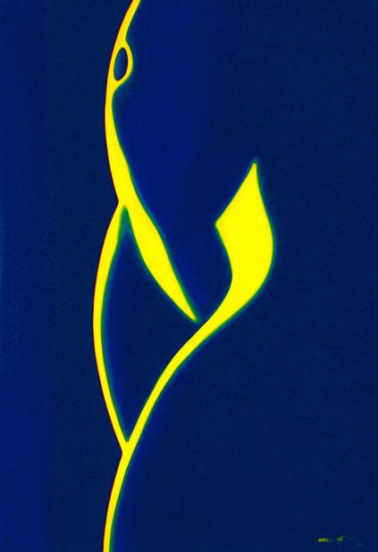 calligraphie-nocturne